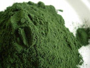 La spiruline verte enpoudre idéale pour l'équilibre naturel du métabolisme